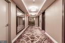 Modern 16th Floor Hallway (New Renovation) - 9039 SLIGO CREEK PKWY #1610, SILVER SPRING