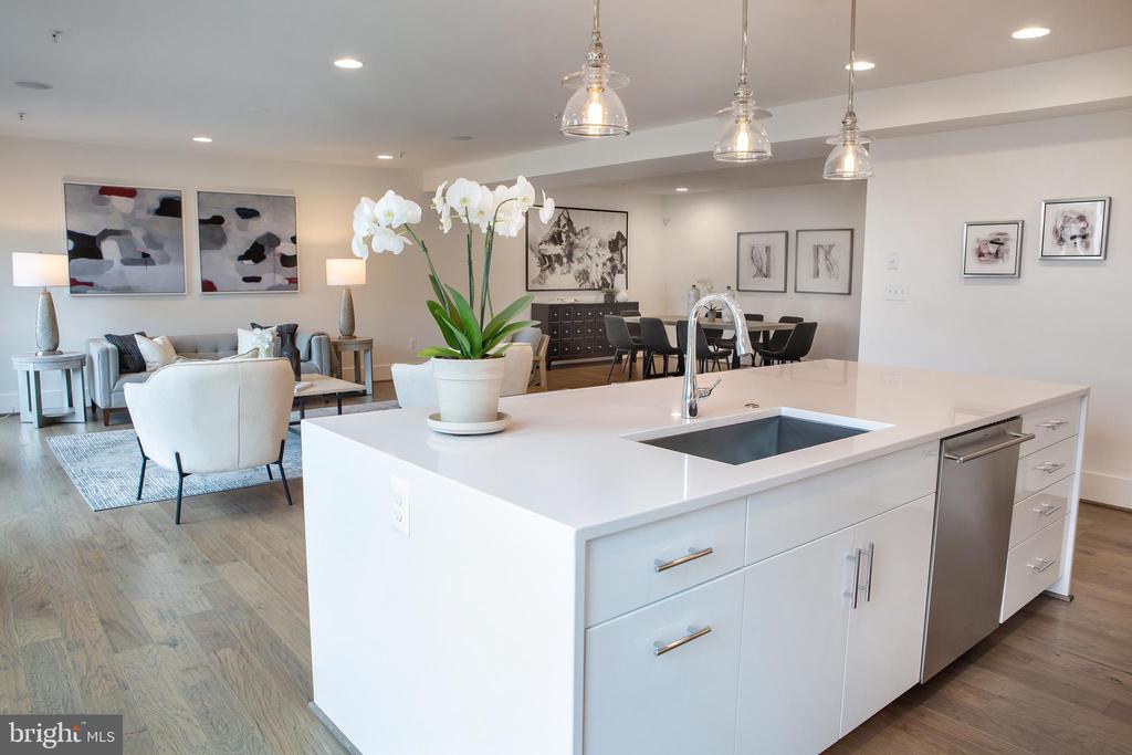 Kitchen Workspace Southeast - 645 MARYLAND AVE NE #201, WASHINGTON