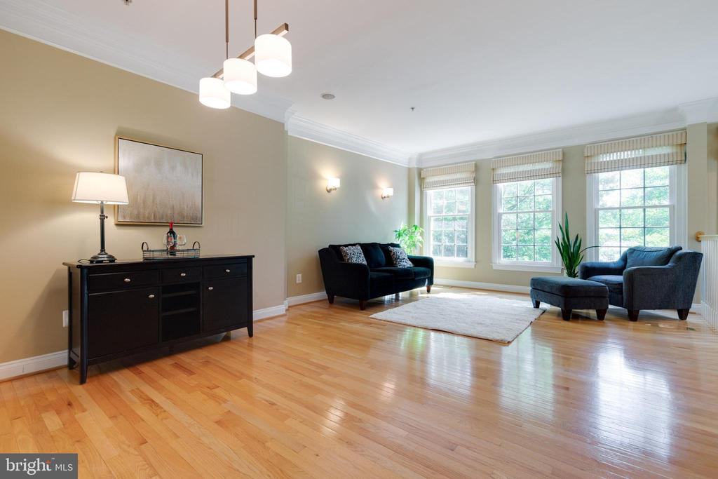 Lots of Natural Light in Living room/Dining room - 181 CAMERON STATION BLVD, ALEXANDRIA