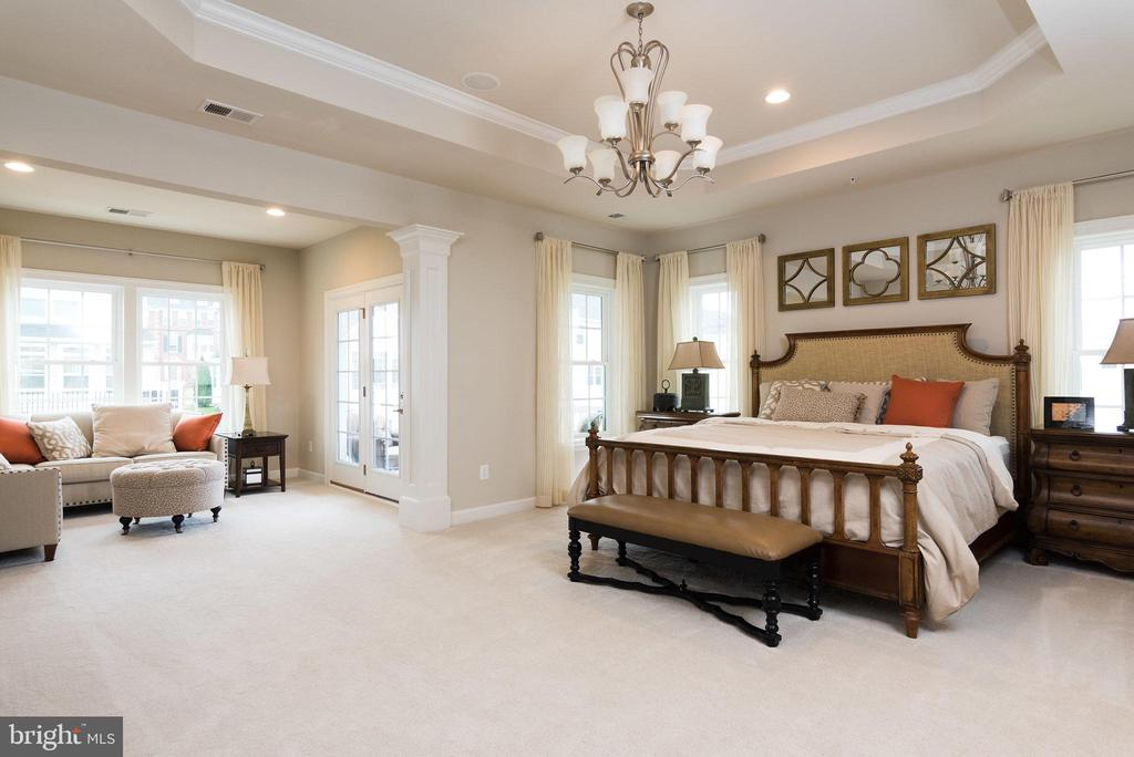 Spacious master suite with tray ceiling. - 25748 RACING SUN DR, ALDIE