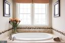 Relax in the soaking tub - 25748 RACING SUN DR, ALDIE