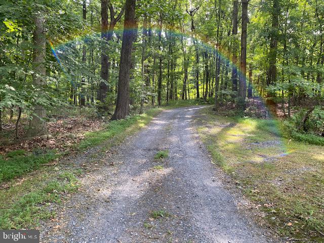 Back Lane of Circular Driveway