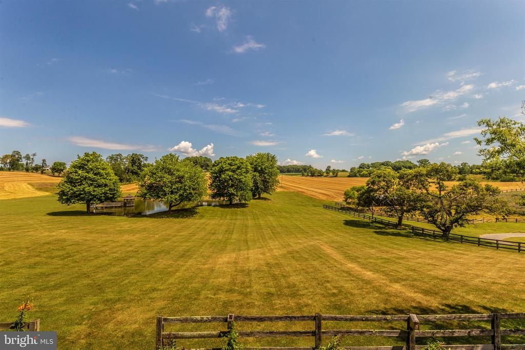 Pasture view over the pond from the ballroom. - 7030 DRUMMINE RD, MOUNT AIRY