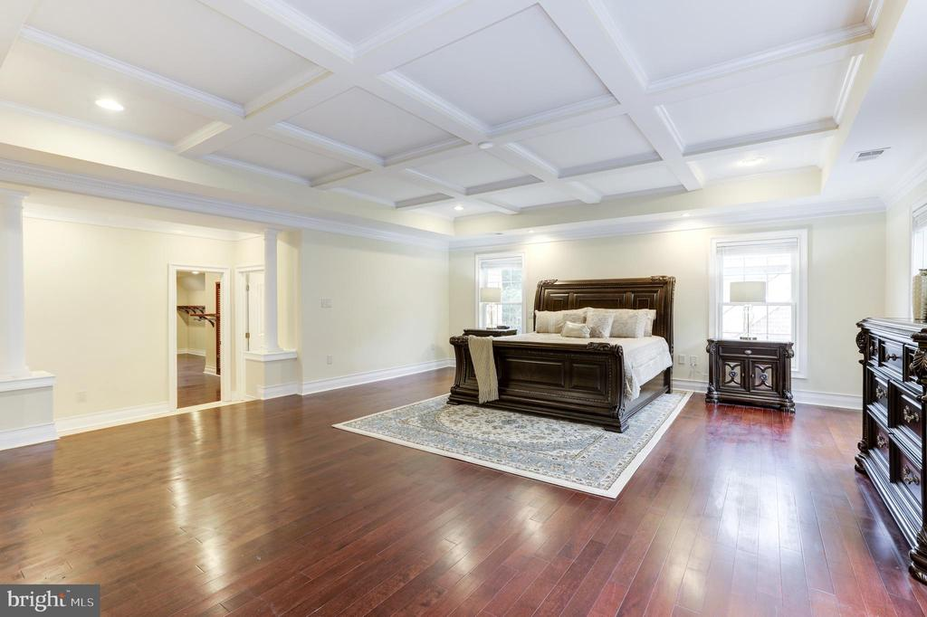 Master Suite! Just Look at the Ceiling! - 11400 ALESSI DR, MANASSAS