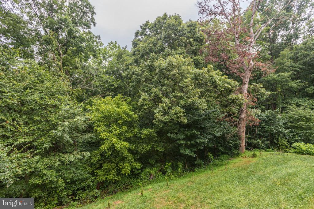 Over 5 Acres of Forrest! To Explore!  Or Add! - 11400 ALESSI DR, MANASSAS