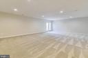 Lower level recreation room. - 19433 SASSAFRAS RIDGE TER, LEESBURG