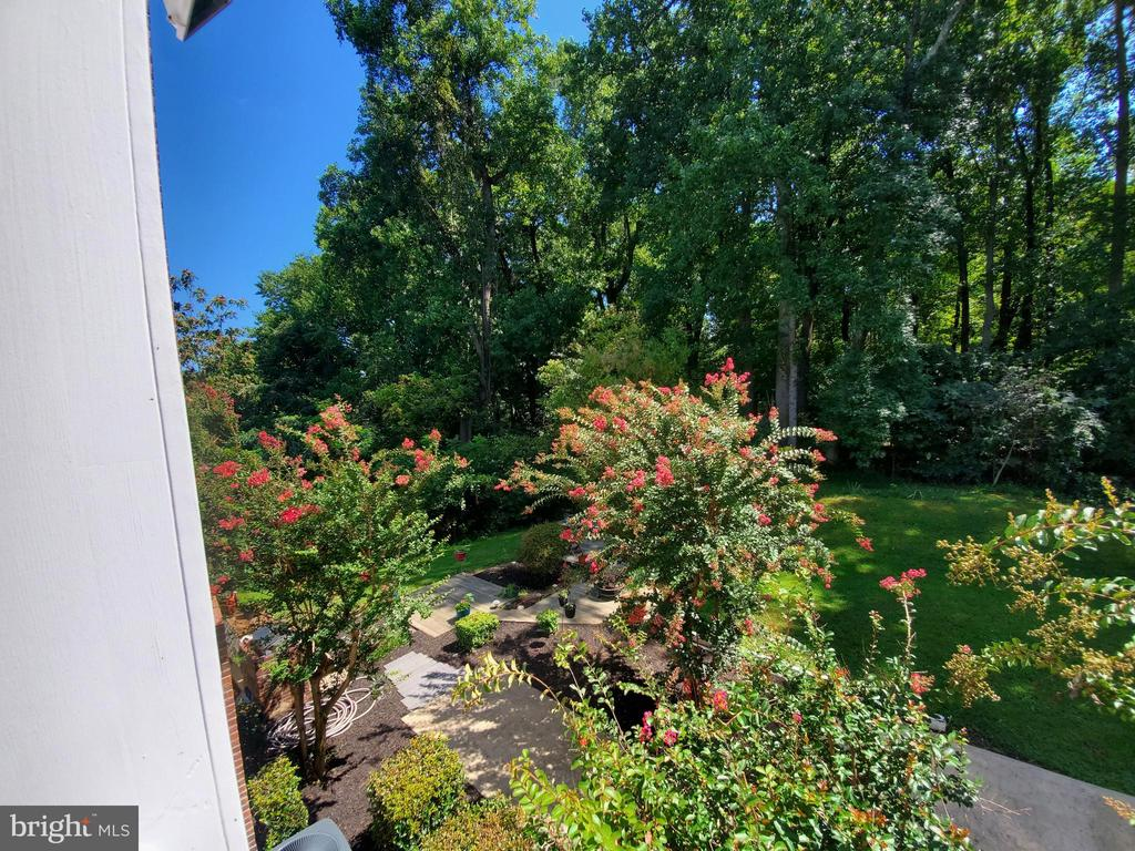 beautiful and extensive landscaping. - 36 POCAHONTAS LN, STAFFORD