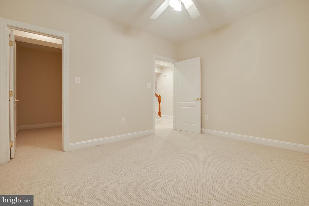 Basement Bonus Room with a walk-in closet - 18857 ACCOKEEK TER, LEESBURG