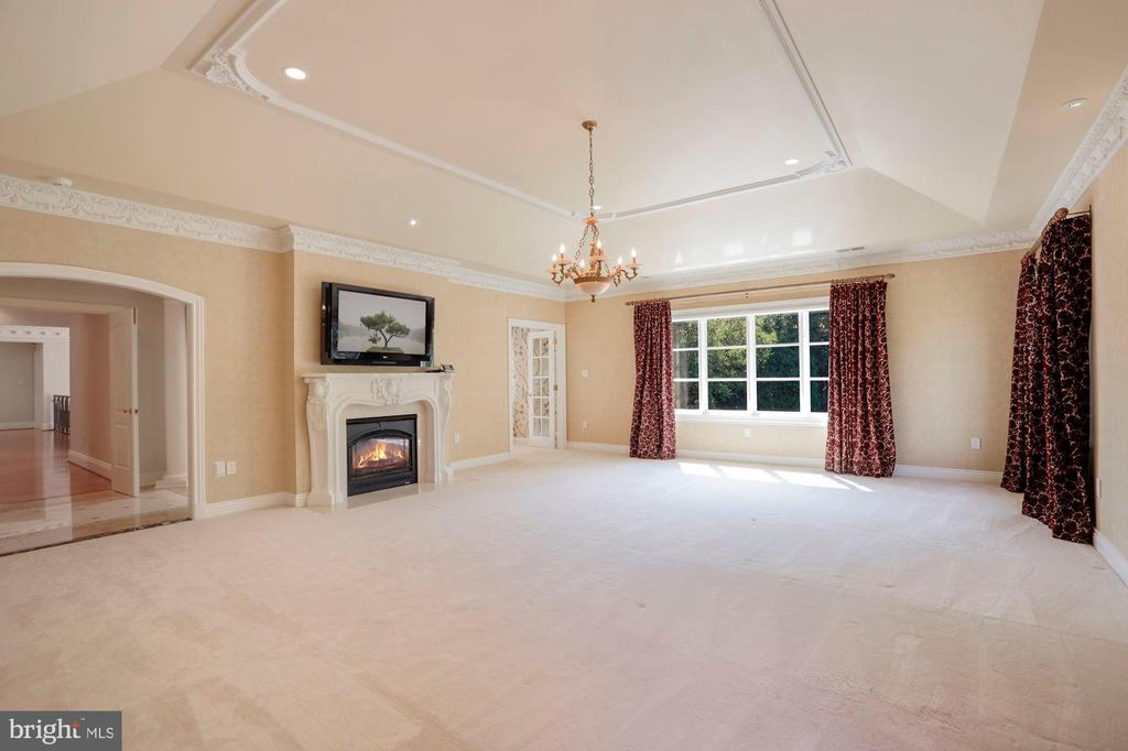 Owner's Suite - 8913 GALLANT GREEN DR, MCLEAN