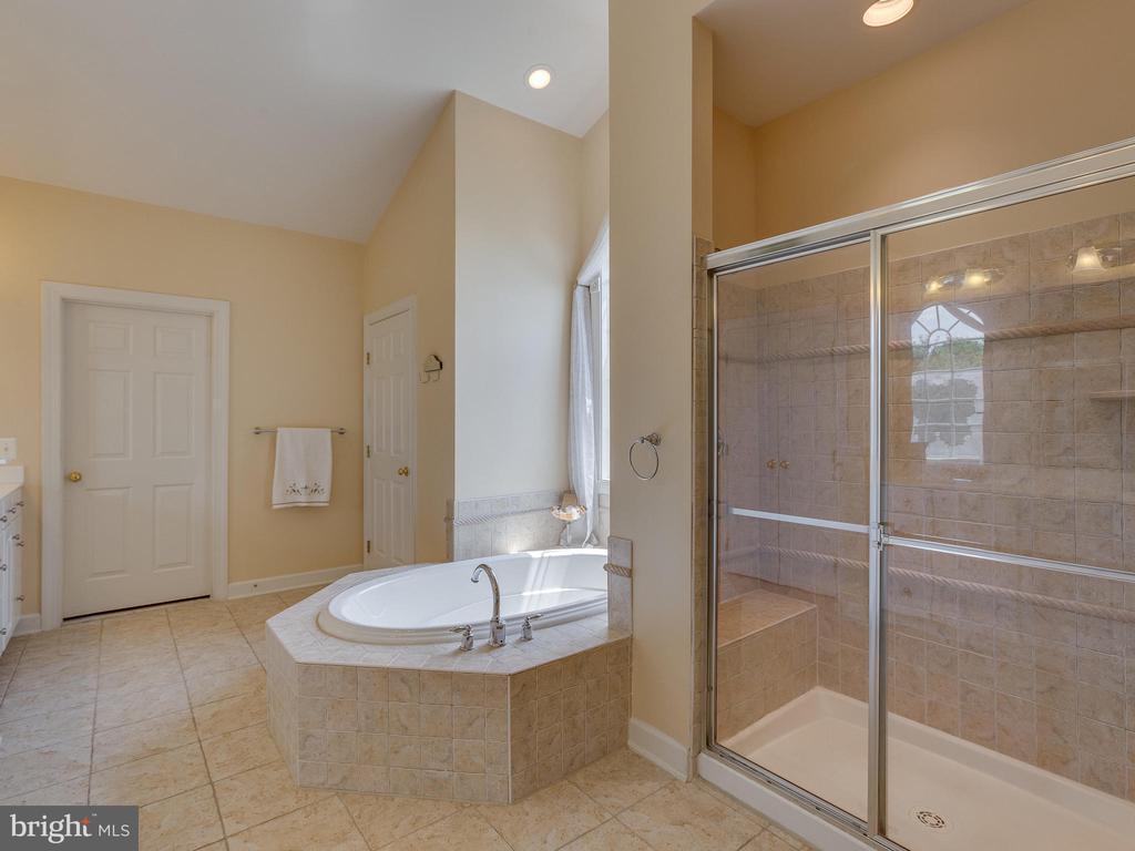 Master Bathroom. - 42294 IRON BIT PL, CHANTILLY