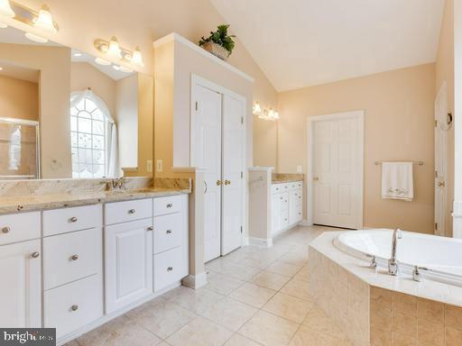 Granite counter tops in Master Bathroom. - 42294 IRON BIT PL, CHANTILLY