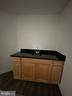 Lower level wet bar - 42939 PARK BROOKE CT, BROADLANDS