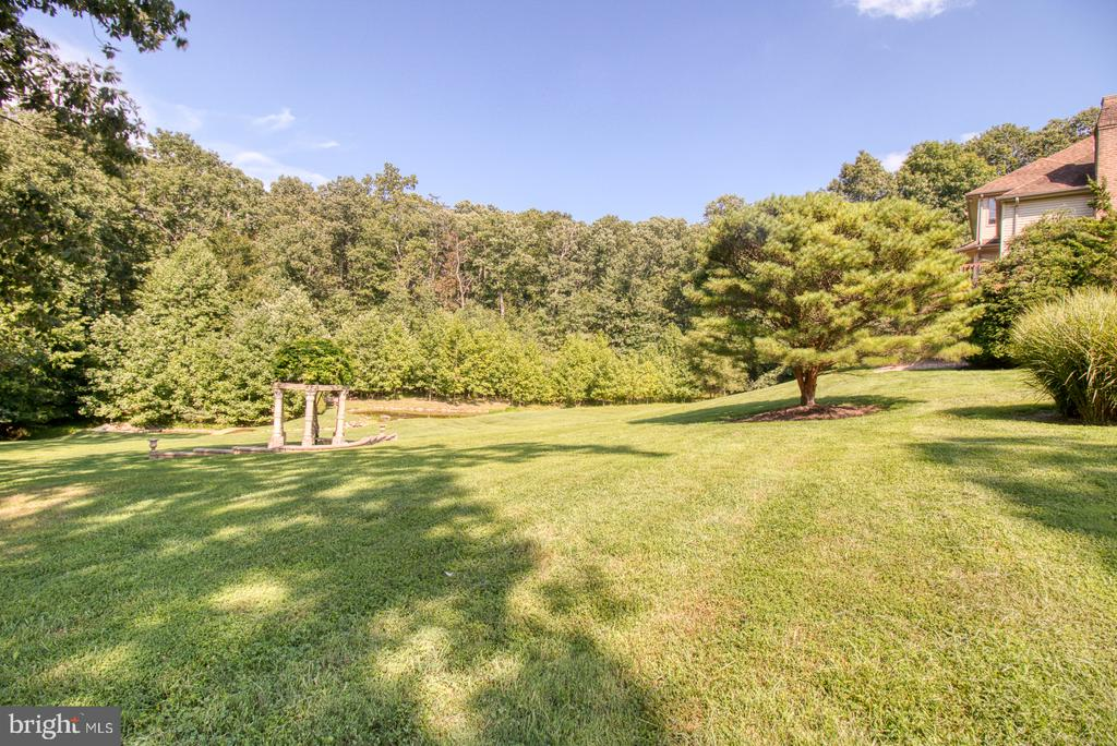 Side yard - 14016 HARRISVILLE RD, MOUNT AIRY