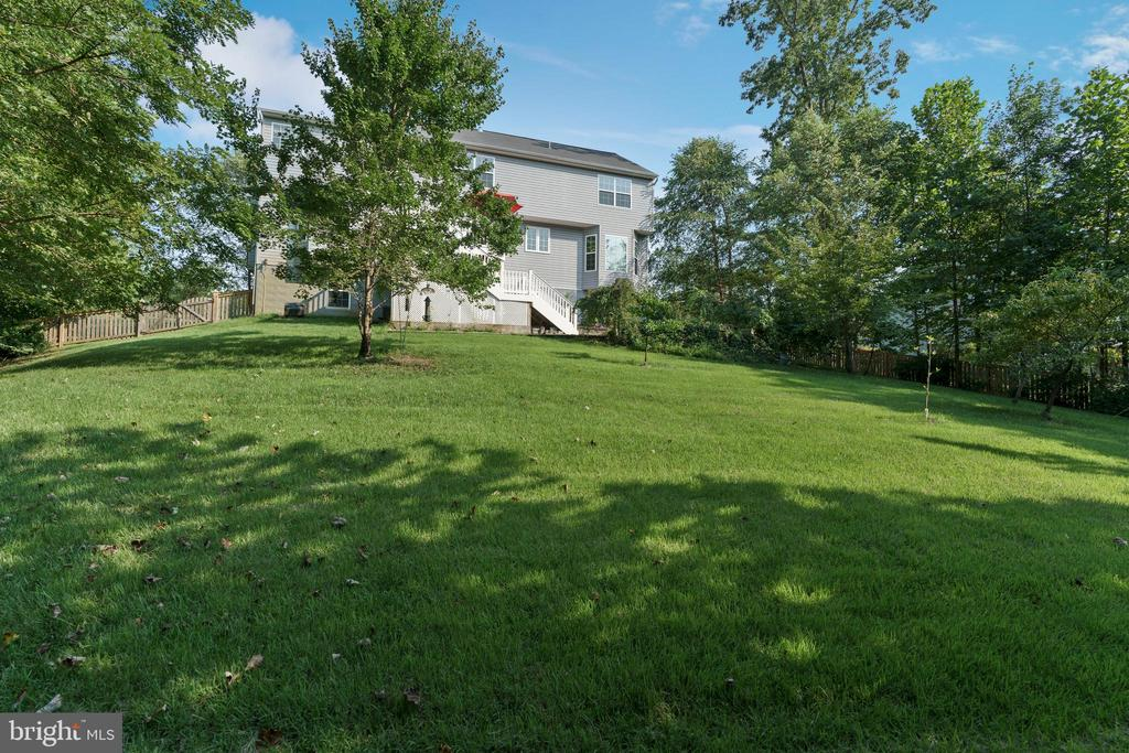 Great  fenced yard w/fruit trees.  Nature abounds - 12 BLOSSOM TREE CT, STAFFORD