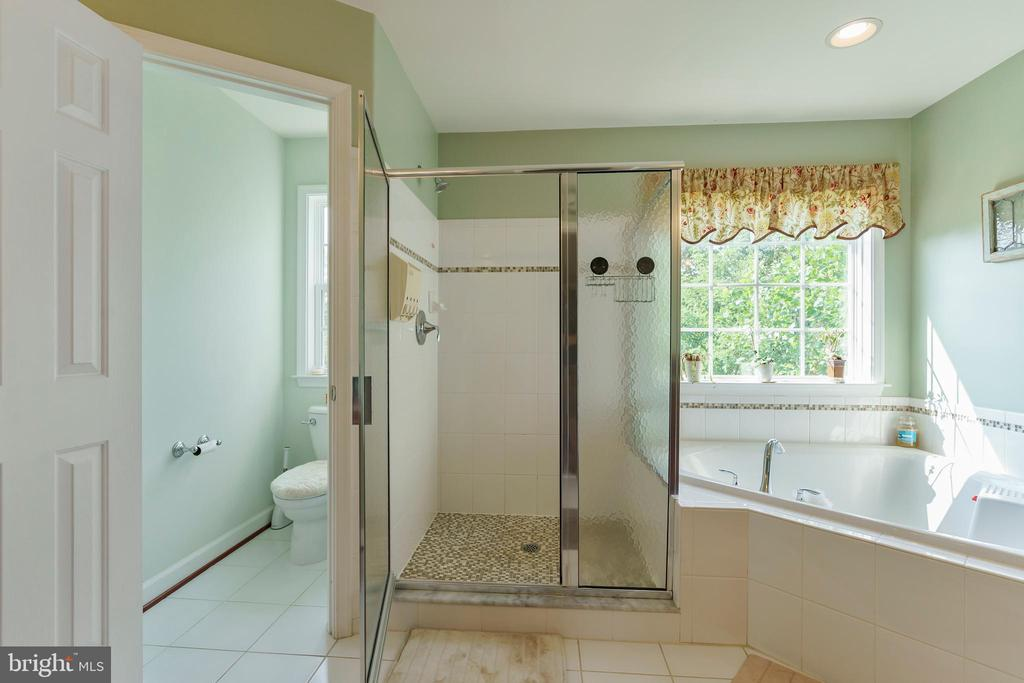 Large master bath with separate shower and tub - 12 BLOSSOM TREE CT, STAFFORD
