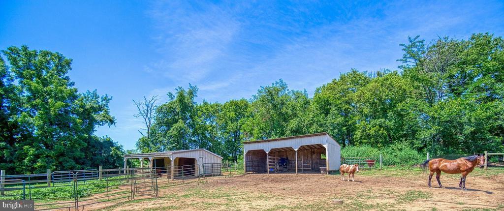 2-Stalls w/Center Aisle Tack; 3-Stall Loafing Barn - 40205 QUAILRUN CT, LOVETTSVILLE