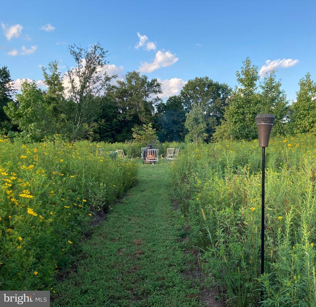 Walk out on the 1 acre lot to your own meadow - 43264 HEAVENLY CIR, LEESBURG