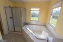 Jetted tub and separate water closet. - 18728 POTOMAC STATION DR, LEESBURG