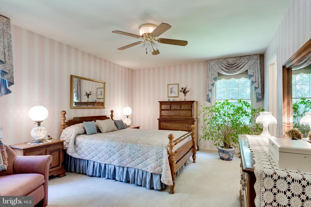 Master Bedroom/BR #1: One of 3 main level bedrooms - 6906 TOKEN VALLEY RD, MANASSAS