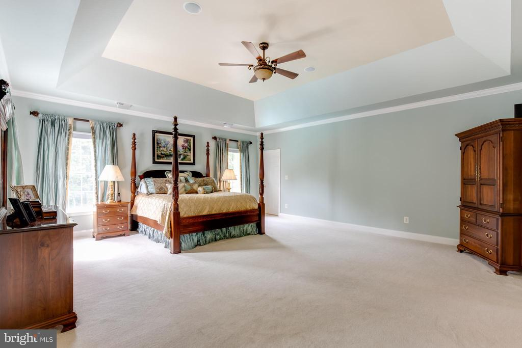 Large master bedroom with tray ceiling - 17765 BRAEMAR, LEESBURG