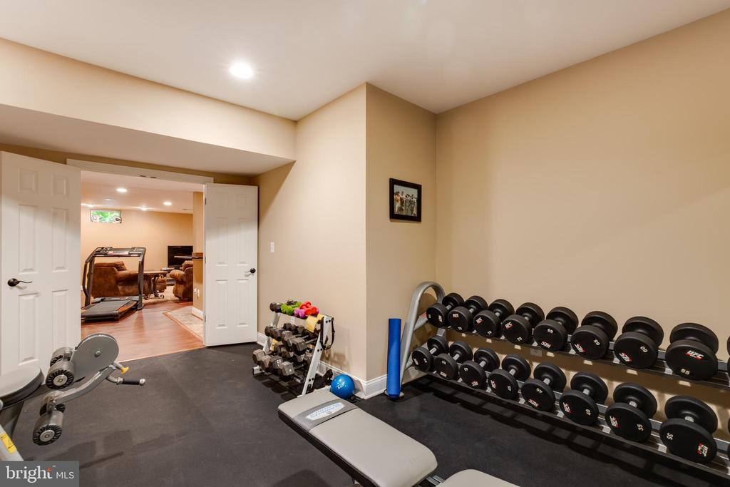 Lower level exercise room- alt view - 17765 BRAEMAR, LEESBURG