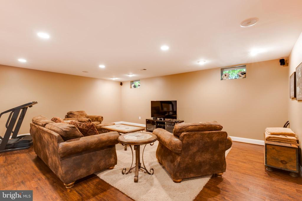 Lower level media area - 17765 BRAEMAR, LEESBURG