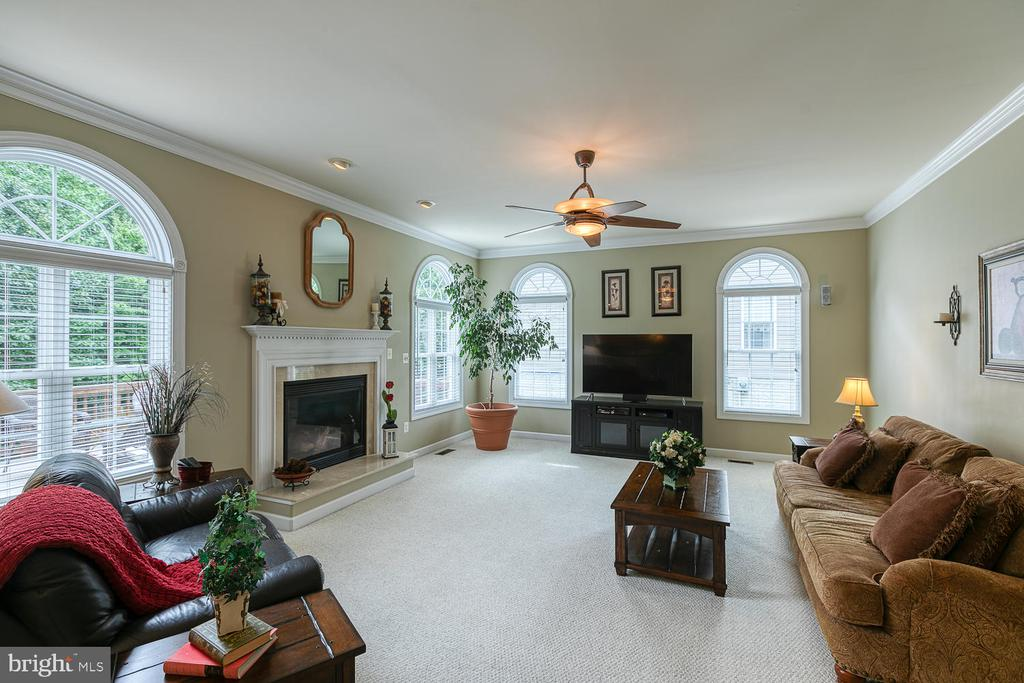 Family Room with 10' Ceiling - 3 ETERNITY CT, STAFFORD