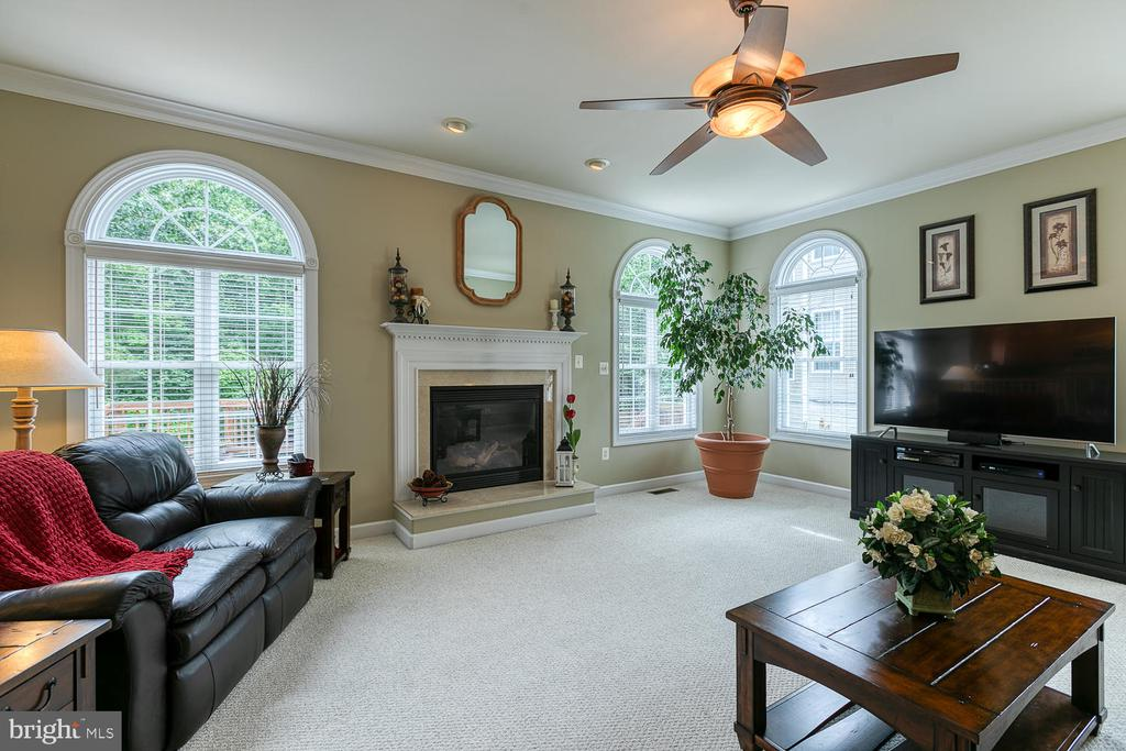 Cozy Fireplace with Raised Hearth - 3 ETERNITY CT, STAFFORD