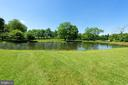 View from the house to the large pond behind - 501 W WASHINGTON ST, MIDDLEBURG