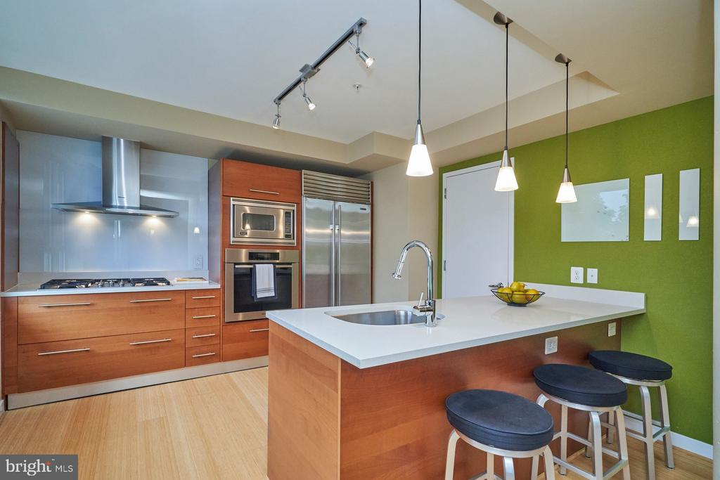 Quartz Countertops and stainless steel appliances - 12025 NEW DOMINION PKWY #G-118, RESTON