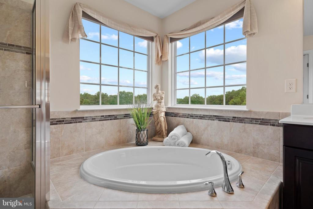 Soaking tubs with pastoral view of the meadow - 43264 HEAVENLY CIR, LEESBURG