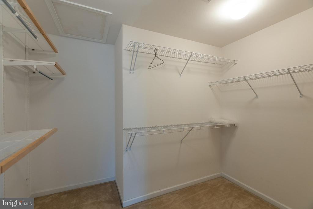 Owners walk in closet with Elfa shelving! - 43058 BARONS ST, CHANTILLY