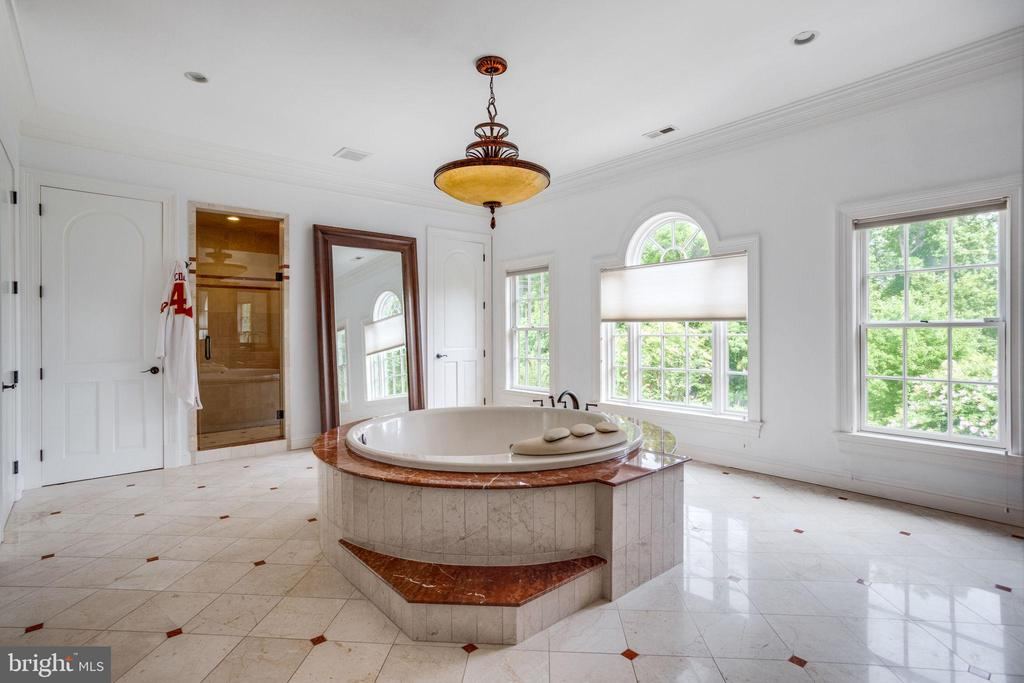Master Bathroom with Jacuzzi Tub - 17814 RUNNING COLT PL, LEESBURG
