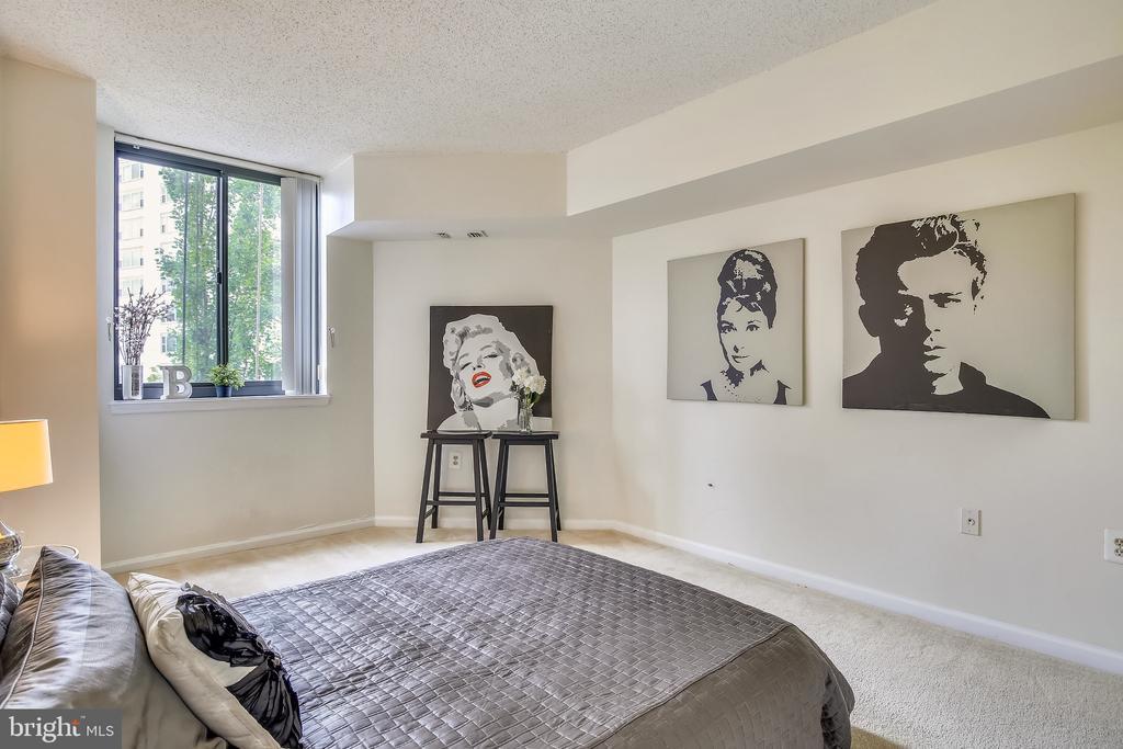 Spacious Bedroom - 1001 N RANDOLPH ST #417, ARLINGTON
