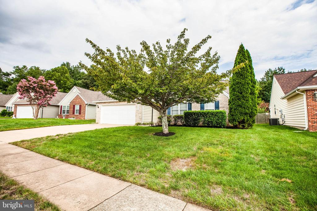 Community sidewalks ! - 11717 COLLINWOOD CT, FREDERICKSBURG