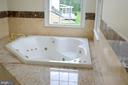 Master bath - Jacuzzzi with jets - 20057 BLACKWOLF RUN PL, ASHBURN
