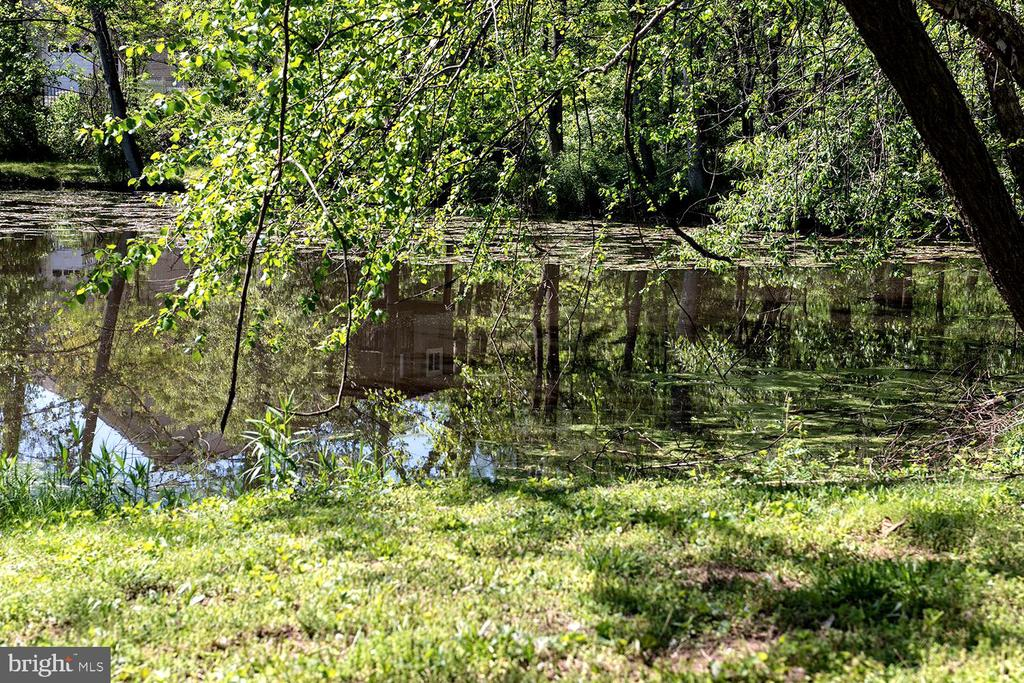 Pond across the street - 9524 LEEMAY ST, VIENNA