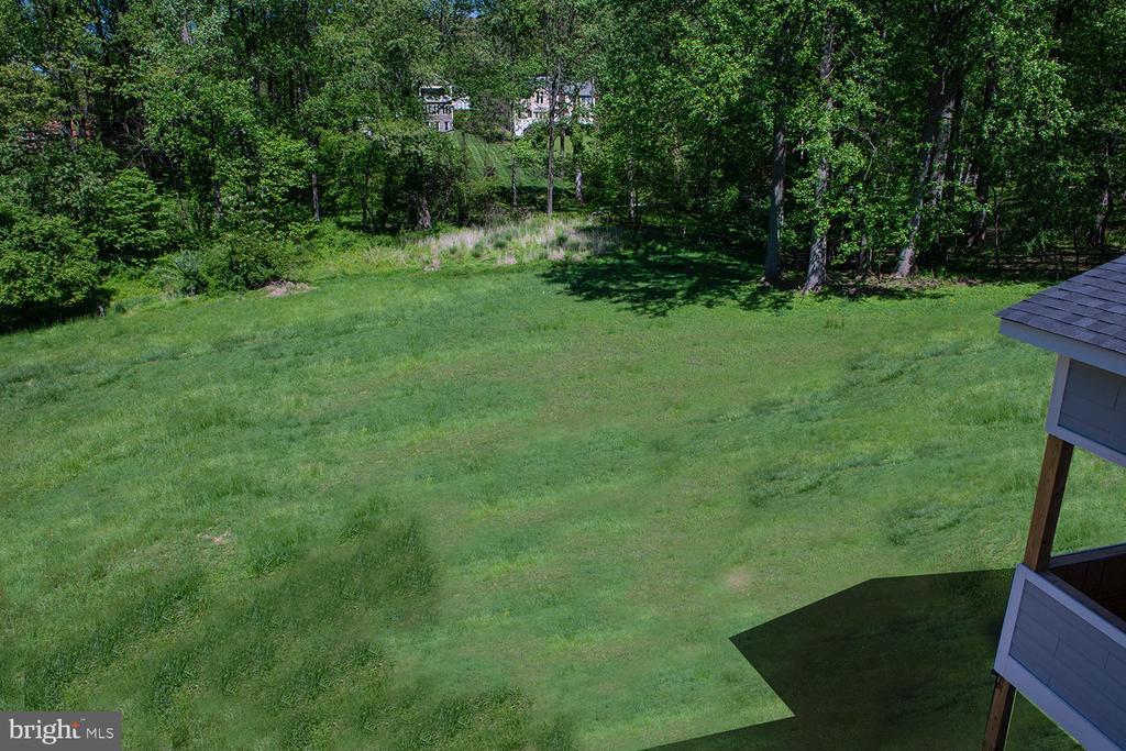 Rear yard with Creek in back *grass photo enhanced - 9524 LEEMAY ST, VIENNA