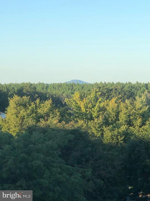Breathtaking  views from 18504 Pineview Square - 18504 PINEVIEW SQ, LEESBURG