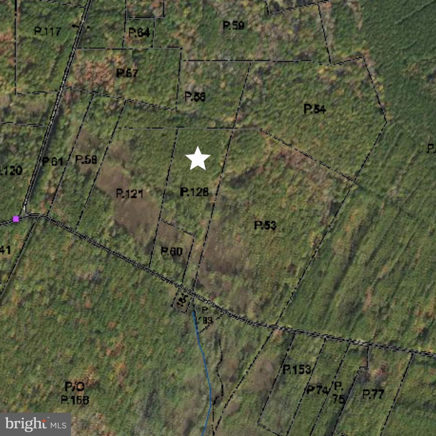 Land for Sale at Tyaskin, Maryland 21865 United States