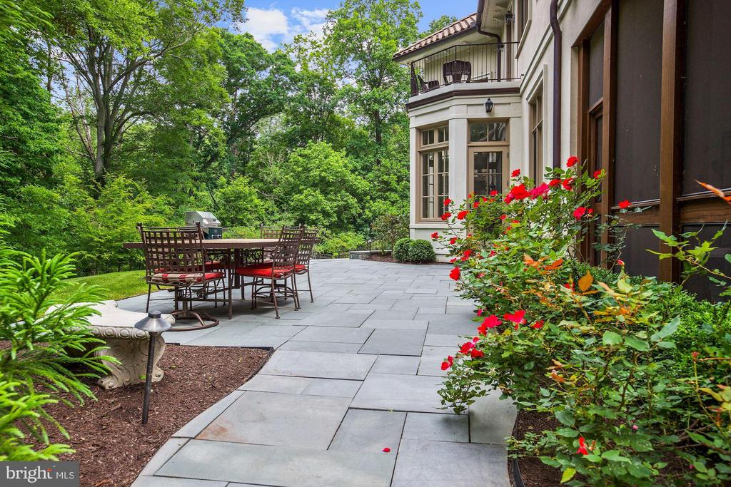 Patio - 906 TURKEY RUN RD, MCLEAN