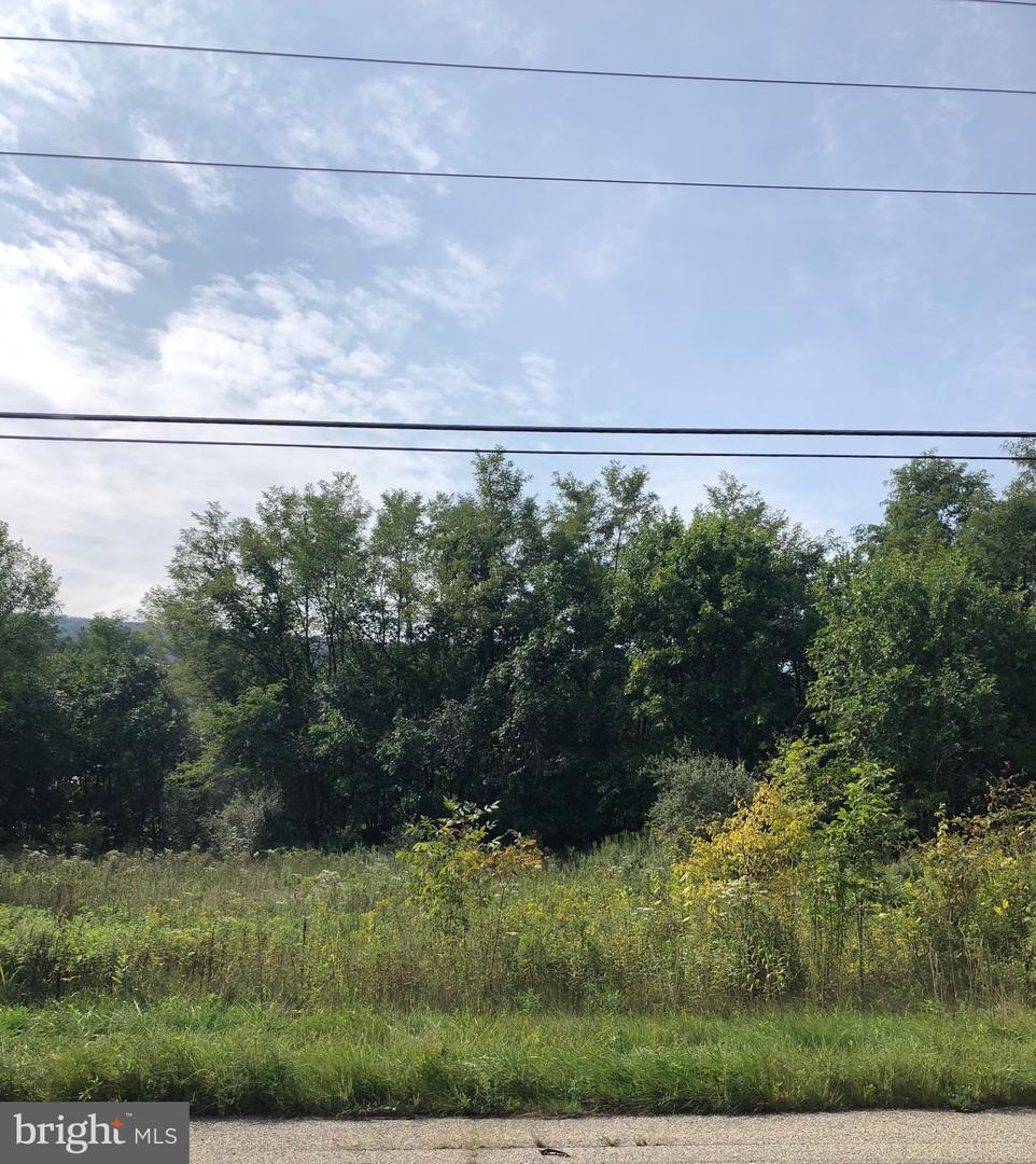 Arazi için Satış at Duncannon, Pennsylvania 17020 Amerika Birleşik Devletleri