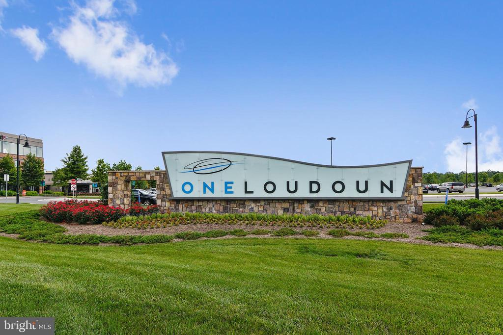 ONE LOUDOUN OFFERS A TON OF COMMUNITY ACTIVITIES - 44533 NEPONSET ST, ASHBURN
