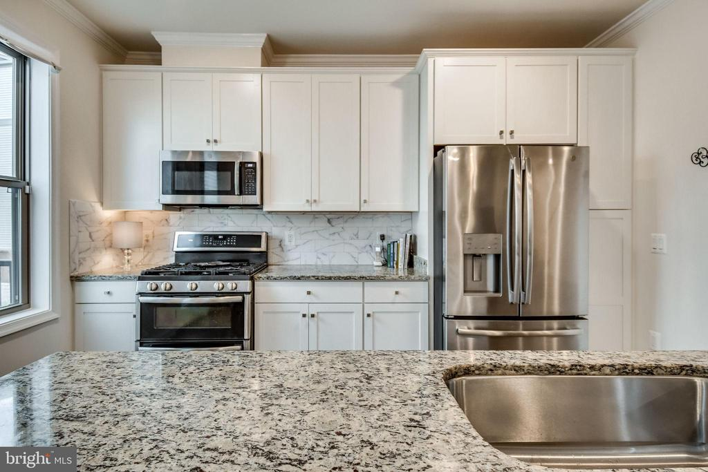 Stainless Steel and Granite Counters - 42908 SANDY QUAIL TER, ASHBURN
