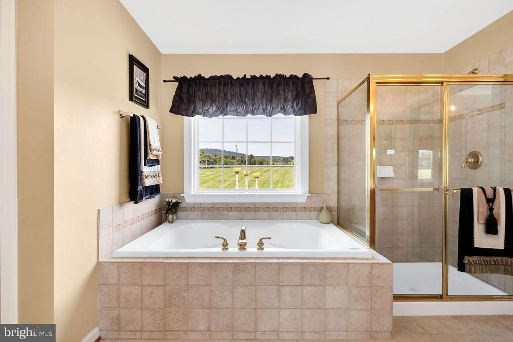 Soaking Tub & Separate Shower - 14079 MERLOT LN, PURCELLVILLE