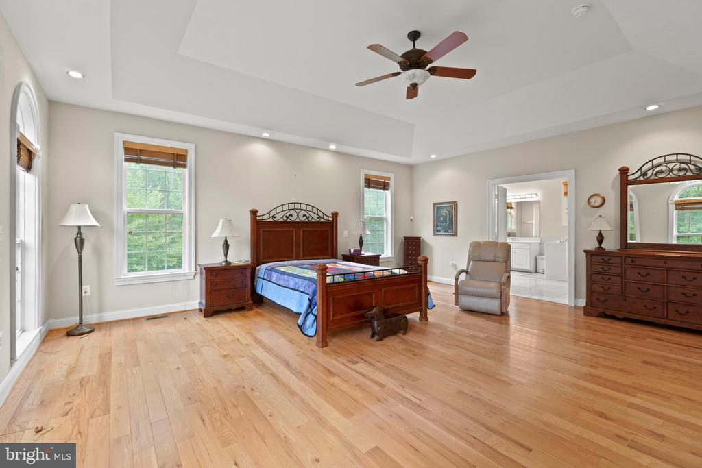 WOOD FLOOR / TRAY CEILING  / CEILING FAN - 108 HIGH RIDGE DR, STAFFORD