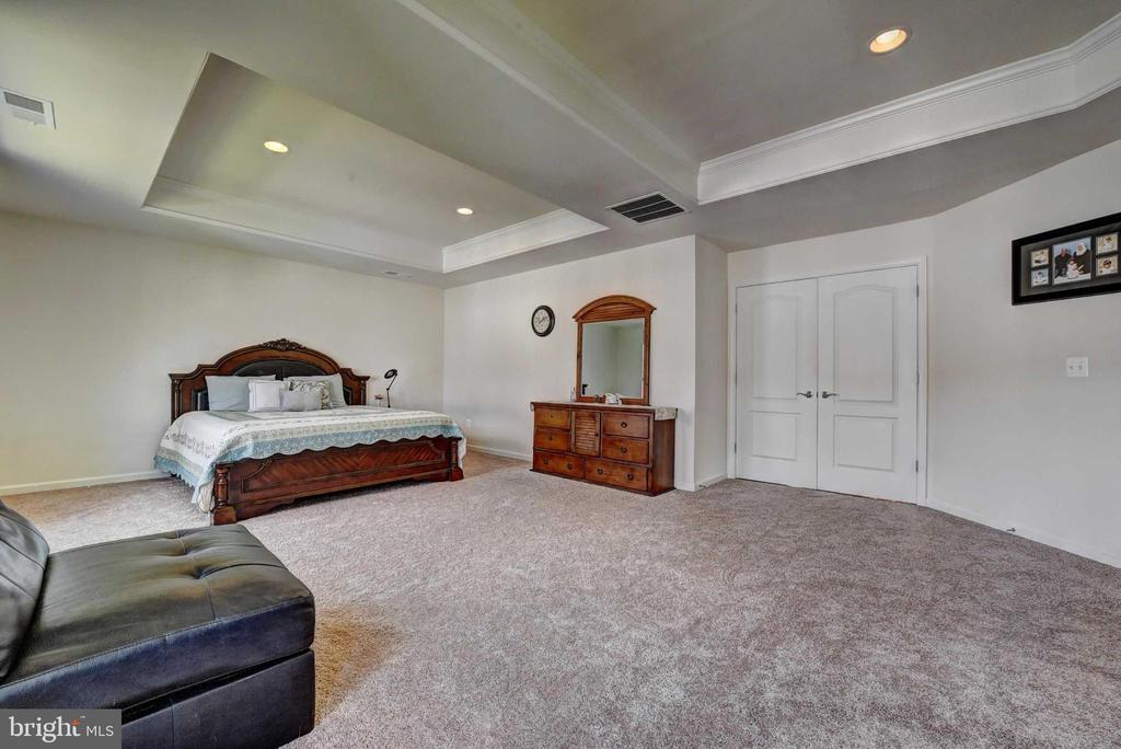 Master Bed with Trey Ceiling - 42340 ABNEY WOOD DR, CHANTILLY