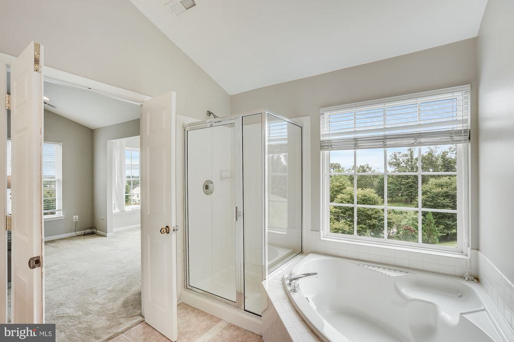 Primary Bathroom with soaking tub - 18504 PINEVIEW SQ, LEESBURG