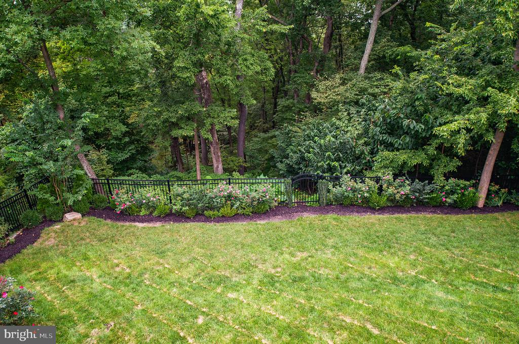 Fenced rear yard with lush woods to view! - 21144 WALKLEY HILL PL, ASHBURN