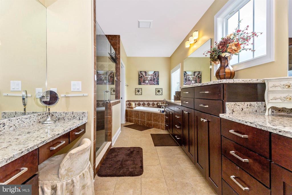 Owner's Luxury Bath - 2635 QUEBEC SCHOOL RD, MIDDLETOWN